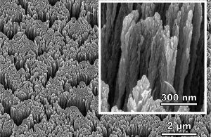 Nanoscale image of palladium metal surface.